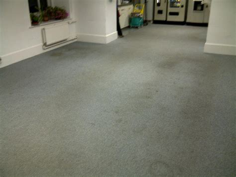 Carpet Cleaning Before And After Pictures Stairs Safer Carpet Or Hardwood Swans Cleaning Bellingham Vax Spring Clean Washer Instructions Decorating A Bedroom With Green United Jackson Mi Rapide Professional Plano Tx Olympic Chicago Il 60639