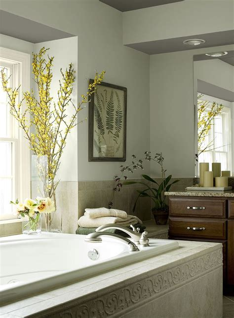 Spa Bathroom Paint Colors by 36 Best Images About Bathroom Color Sles On