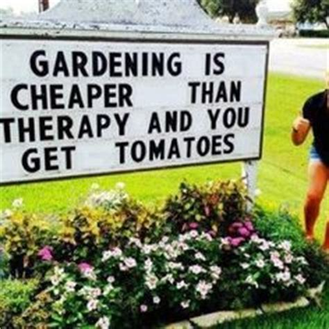 Gardening Memes - 1000 images about gardening memes on pinterest therapy bury and the earth