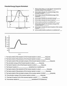 Potential Energy Diagram Worksheet Worksheet For 10th