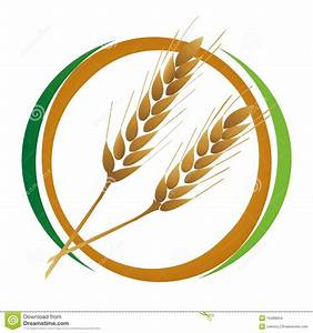 Wheat icon stock vector. Illustration of abstract, seed ...