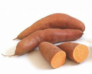 How to Plant and Grow Sweet Potatoes how-tos DIY