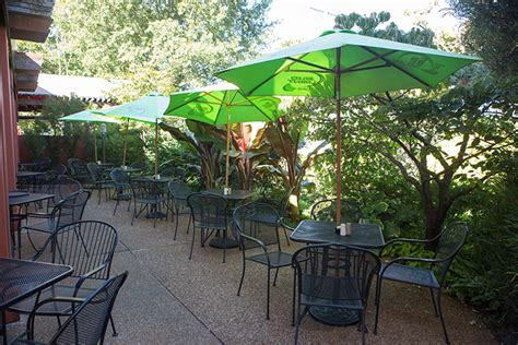 hacienda mexican restaurant st louis best outdoor patio