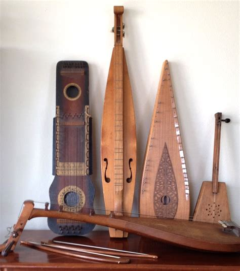 collection  unusual stringed musical instruments