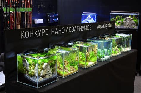 Pro Led Aquarium Lamp From Collar B2b