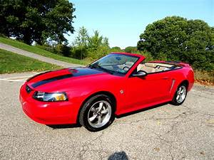 Used 1999 Ford Mustang GT convertible for Sale in Pittsburgh PA 15234 Martin Auto Gallery