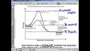 Kinetics  Thermodynamics   U0026 Equilibrium  Pe Diagrams