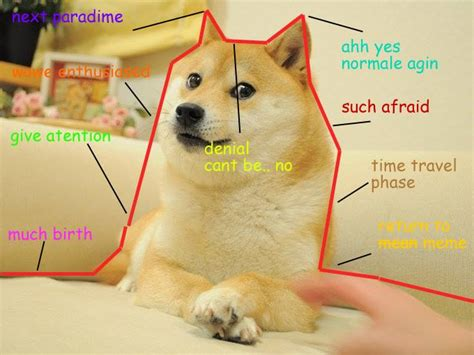 With its own cryptocurrency, Doge has officially conquered ...