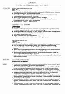 computer repair technician resume blaster headhunters With resume blast services