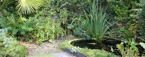 le uv pour bassin poissons le jardin en mode poissons et bassins naturels quot ma maison mon jardin quot