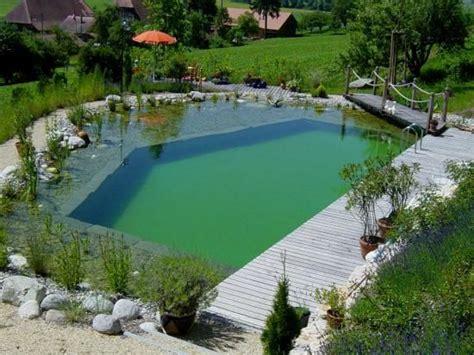 schwimmteich oder pool schwimmteich kantig piscinas schwimmteich natur pool und teich