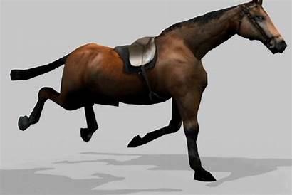 Horse Animated 1080p Wallpapers Desktop Pc Wallpapersafari