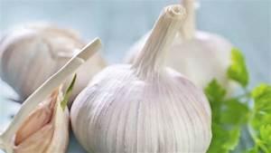 Planter Ail Rose : comment planter un oignon fabulous oignon with comment planter un oignon interesting conseils ~ Nature-et-papiers.com Idées de Décoration