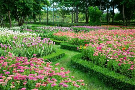 le jardin a l anglaise jardin 224 l anglaise d 233 couvrez le charme dans l irr 233 gularit 233