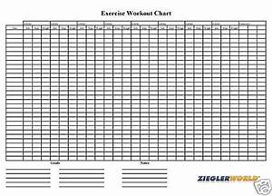 Reusable Erasable Exercise Work Out Wall Chart