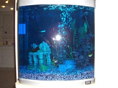 le bleu de m 233 thyl 232 ne forum poissons