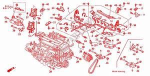 1994 Honda Civic Wiring Harnes