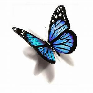Blue 3D Butterfly Tattoo Design | Butterfly tattoo designs ...