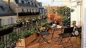 Plantes D Hiver Extérieur Balcon : plantes d hiver ext rieur balcon pivoine etc ~ Nature-et-papiers.com Idées de Décoration