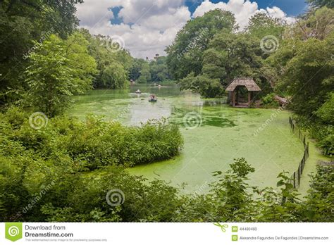 Central Park Boat Paddling by The Lake Central Park New York Editorial Image Image