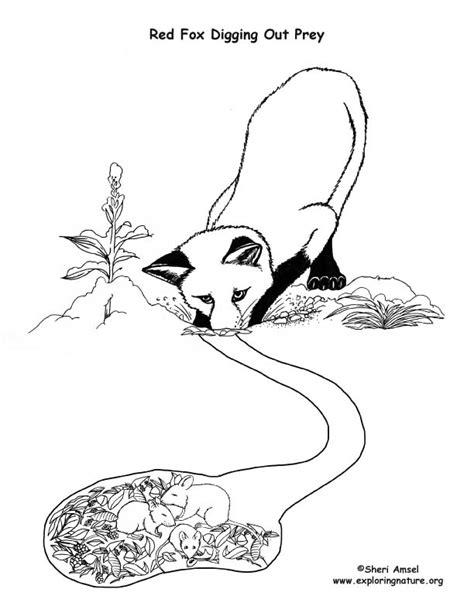 winter animal mural survival adaptations