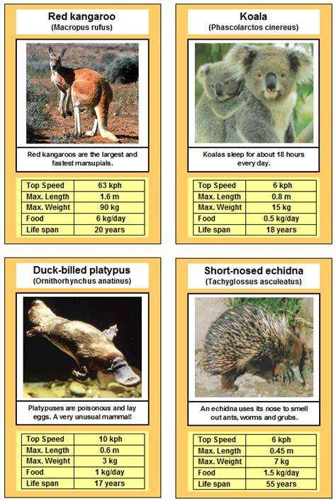 printable animal trump cards card game marsupials trumps monotremes games