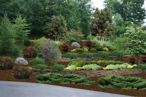 hillside backyard landscaping ideas npnurseries home