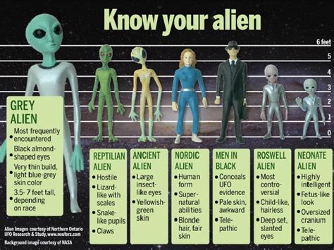 Roswell's Learned To Embrace The Extraterrestrial