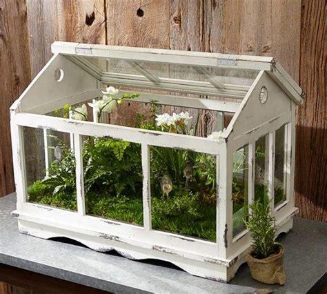 Deko Gewächshaus Holz by Glass Teapot Terrarium Mini Gewaechshaus Holz Weiss