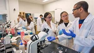 Food Science and Technology Department | Nebraska
