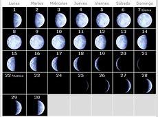 Calendario lunar para conocer el momento del parto junio