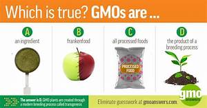 57 Best Images About Gmo Fact Vs Fiction On Pinterest