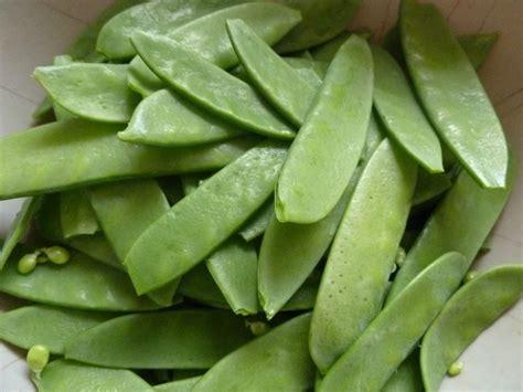 cuisiner les pois gourmands les bienfaits de 20 légumes à inclure dans