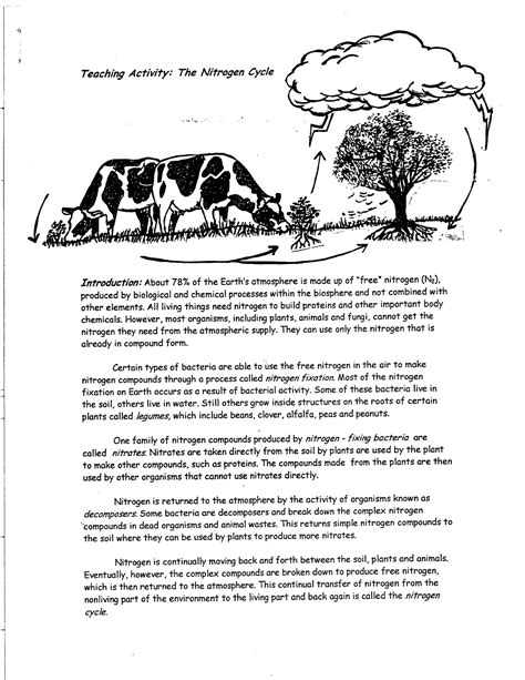 16 best images of carbon cycle worksheet high school