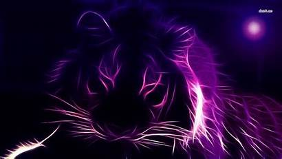 Neon Tiger Wallpapers Lion Abstract Desktop Outline