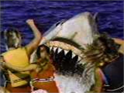 Banana Boat Ride Shark Attack by The Jaws The Story
