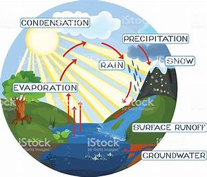 The Water Cycle Stock Vector Art  U0026 More Images Of 2015