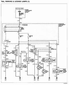 Elantra Headlight Wiring