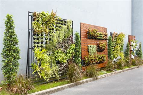 How To Start A Vertical Garden by 5 Reasons Why You Should Start A Vertical Garden