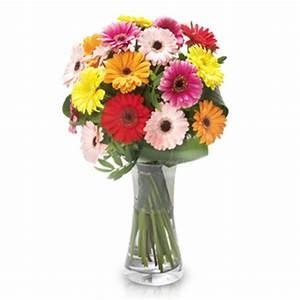 Einzelne Blume Vase : die blume des monats juli gerbera blog floraqueen deutschland ~ Indierocktalk.com Haus und Dekorationen