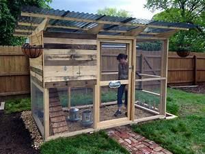 Denny Yam: Pallet chicken coop plans