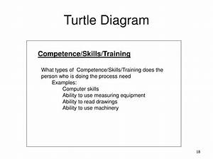 Ppt - Turtle Diagram Powerpoint Presentation