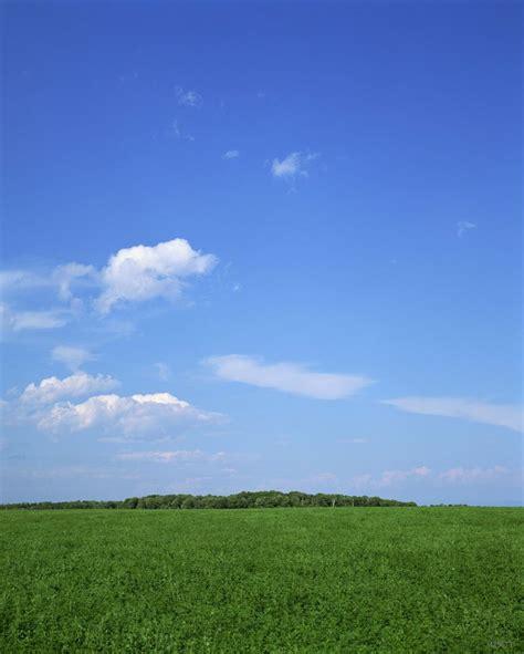 shipping vinyl xft backdrop blue sky prairie mow