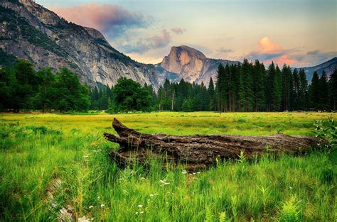 usa, Parks, Mountains, Forests, Scenery, Yosemite, Grass ...
