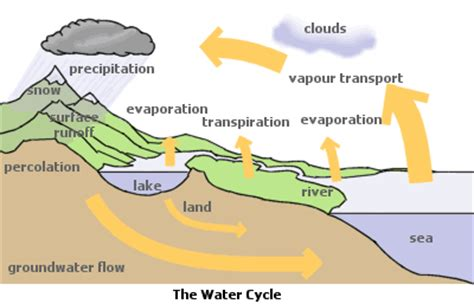 Water Cycle Diagram Earthguide by Water Cycle Science Is
