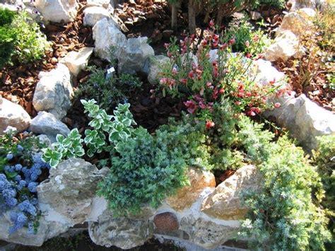 giardino roccioso progetto giardini da realizzare progettazione giardini