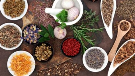 cuisine ayurveda the ayurvedic principle of foods that heat up and cool