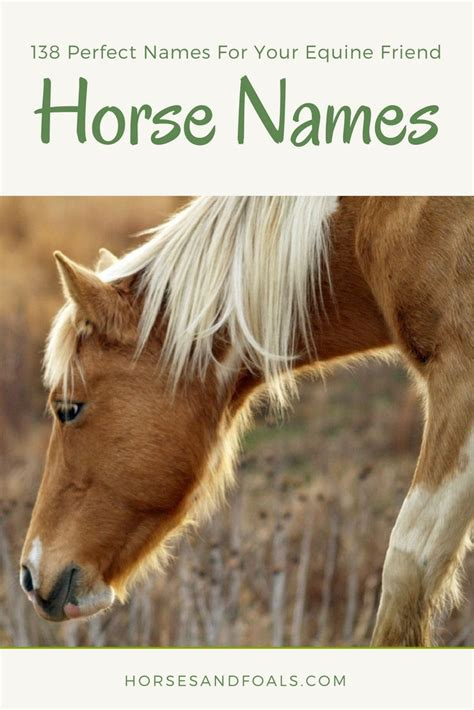 names horse