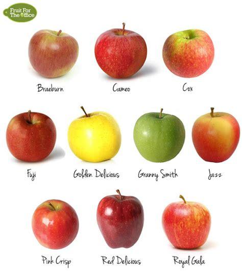 Apple Me Crazy! – Junior Master Gardener