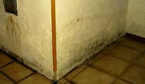 Mauer Gegen Feuchtigkeit Abdichten : mauertrockenlegung aufsteigende feuchte nasse w nde fundament mauer feuchtigkeit ~ Sanjose-hotels-ca.com Haus und Dekorationen